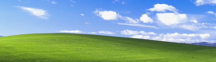 windowsXP-fields